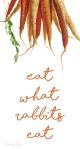 vegan rabbit food phone wallpaper