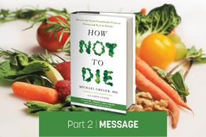 "A Junk-Food-Vegan Reads ""How Not to Die"" // Message (Part 2/5)"